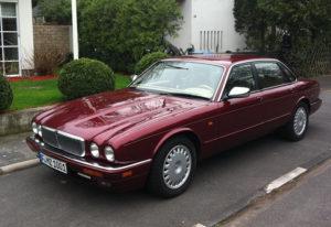 Jaguar von Max Zweig